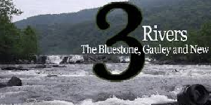 bluestone-gauley