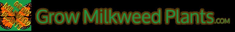 monarch milkweed 3