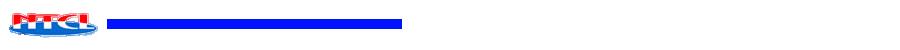 nippon thermo Logo