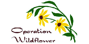 operation-wildflower