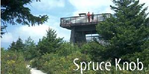 spruce-knob