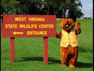 West Virginia french creek freddie wildlife center